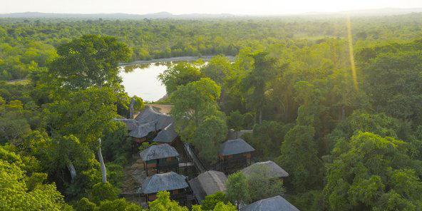 Parcs africains : les Diakité réveillent la faune ivoirienne